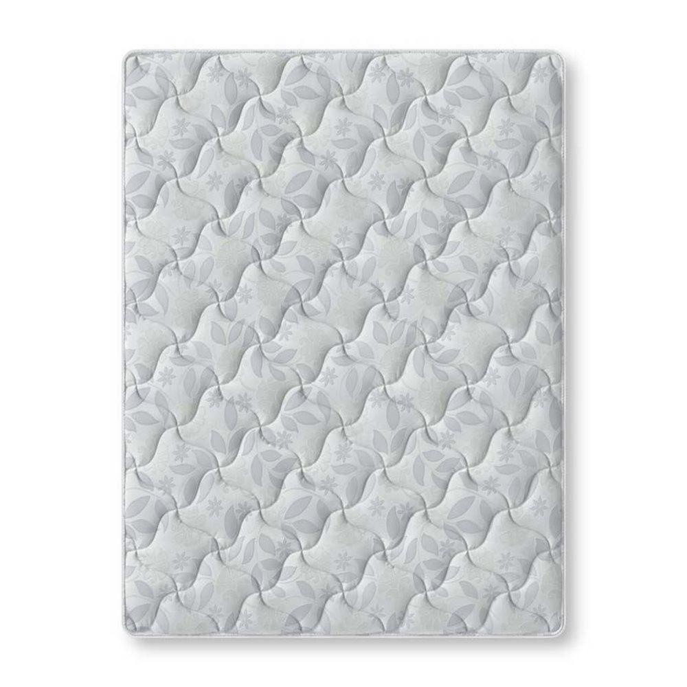 Classic Plush Fabric